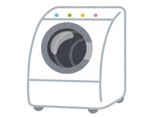 洗ったはずのラグが洗濯機から消えた