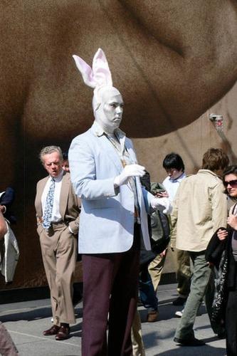 残念なウサギのコスプレ12
