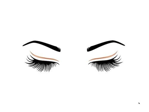 眉毛の遺伝