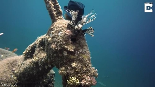 ダイバーが海底でロバの彫刻を発見01