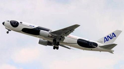 ペイント航空機19