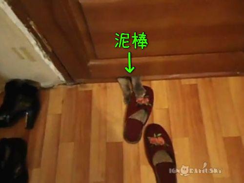 猫の飼い主「ドアの下のスリッパが盗まれるんだ