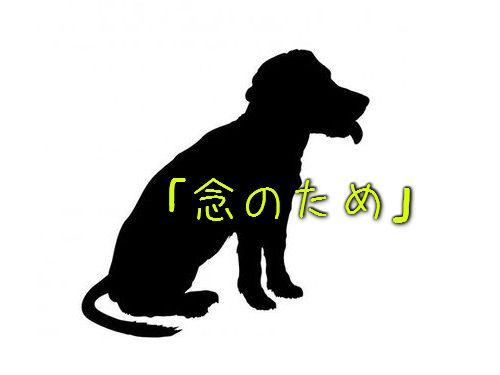 犬「念のため」00