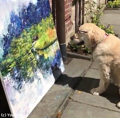 うちの犬は美術評論家01