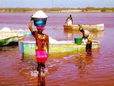 セネガルのレトバ湖00