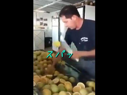 レモン切りの達人00
