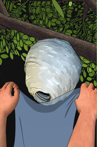 スズメバチの対処方法01