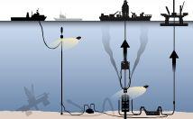 原油流出事故 80