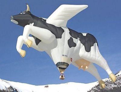 奇抜なデザインをした世界のおもしろ気球 01
