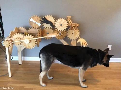 犬を自動でナデナデするマシーン00