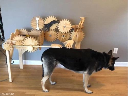 犬を自動でナデナデするマシーン01