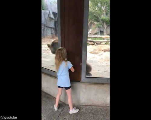 クマと少女のかくれんぼ04