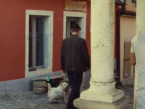 老人と愛犬01