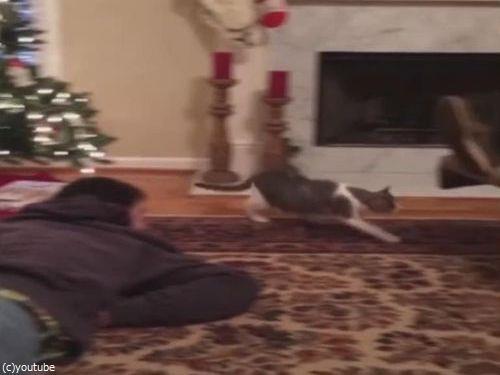 猫の前で死んだふりをしてたら…02