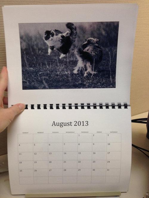 猫のカレンダー08