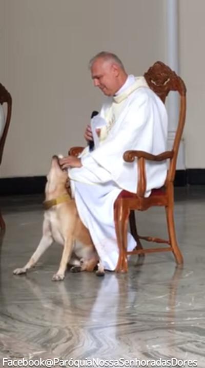 礼拝中に犬が乱入!神父の対応が話題に02
