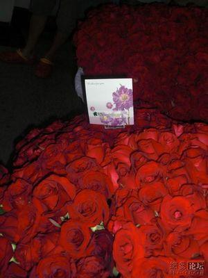 一万本のバラ05