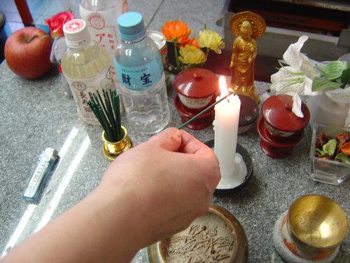 日本で猫の仏葬を体験した04