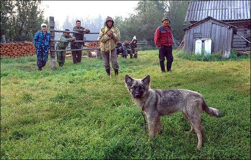 3歳の女の子がシベリアでサバイバル01