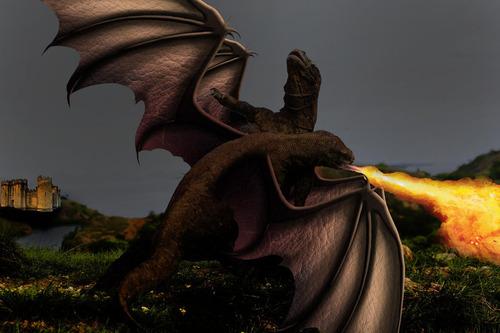 コモドドラゴンのケンカ15