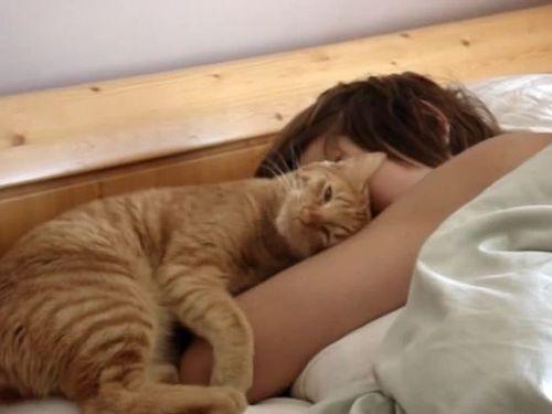 すりすり猫・目覚まし01