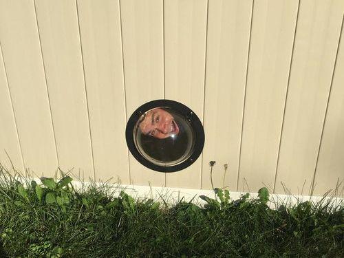 犬のためにフェンスに小窓02