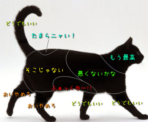 猫と犬のツボ01