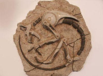 未来の化石07