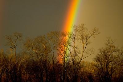 小道に現れた2重の虹ゲート05