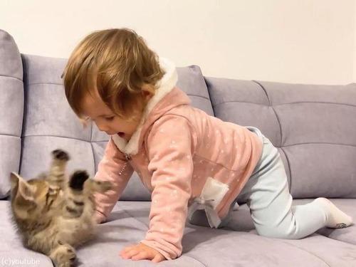 女の子の赤ちゃんと子猫03
