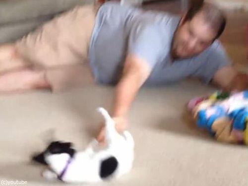 パパと子犬の戦い02