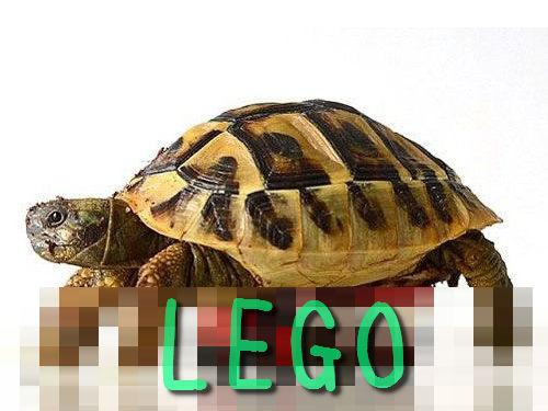 歩けない亀にレゴの補助輪00