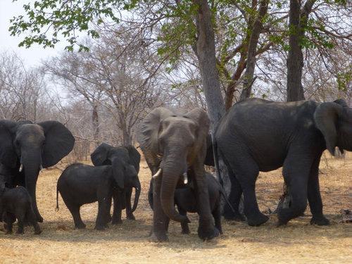 アフリカ縦断の旅22