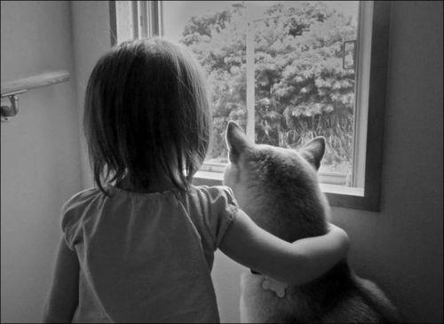 愛情いっぱいの動物09