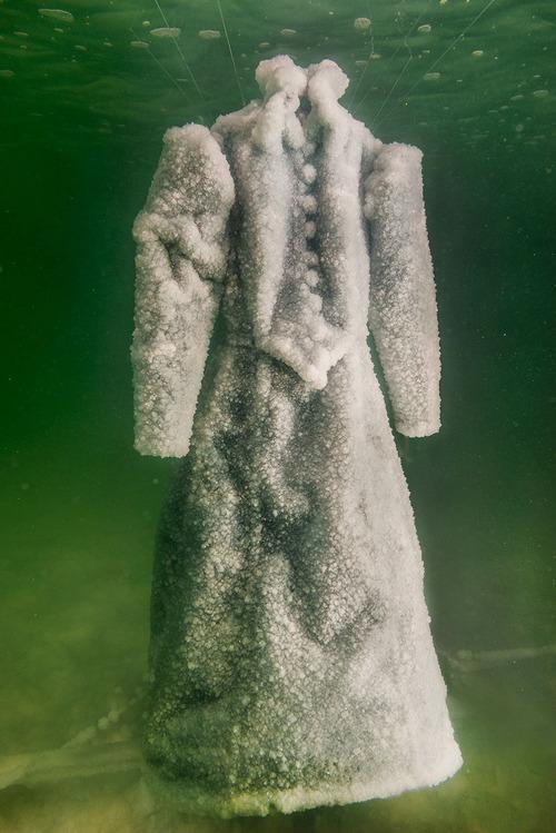 死海に2年間ドレスを沈めると→こんな姿に変身する05