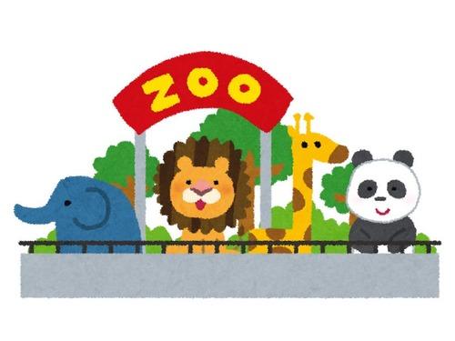 混乱する動物園のシチュエーション