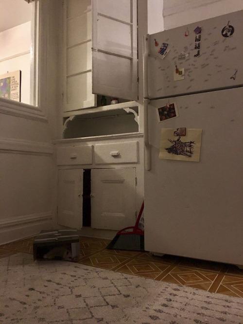猫はどこにいる?06