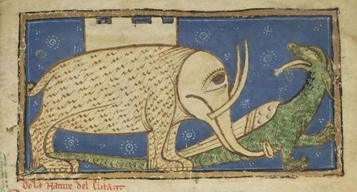 中世の想像で描かれたゾウ13