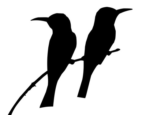 エルクシティの鳥の保護区