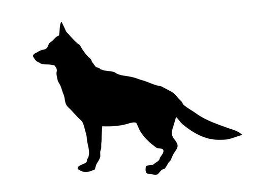 ペット禁止のマンションで犬がばれた