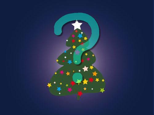寒冷地仕様のクリスマスツリー00