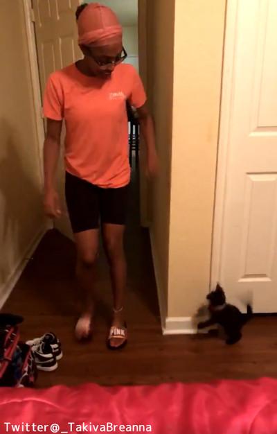 猫「わっ!」 飼い主さんへの可愛すぎるイタズラ03