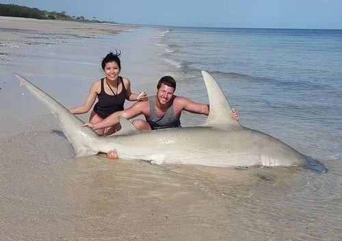 ワイルドすぎる…素手でサメを捕まえる男01