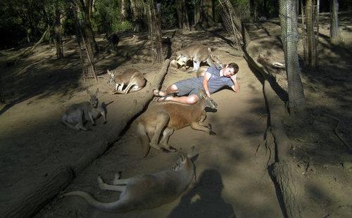 そのころオーストラリアでは19