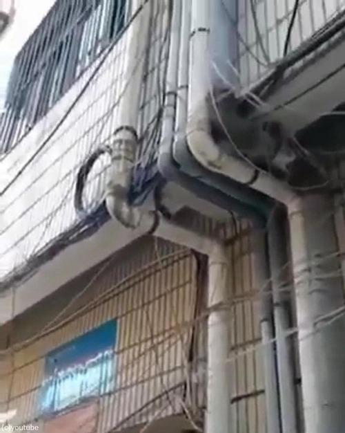 排水管の根っ子03