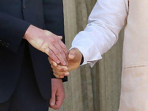インド首相とイギリスのウィリアム王子が握手02