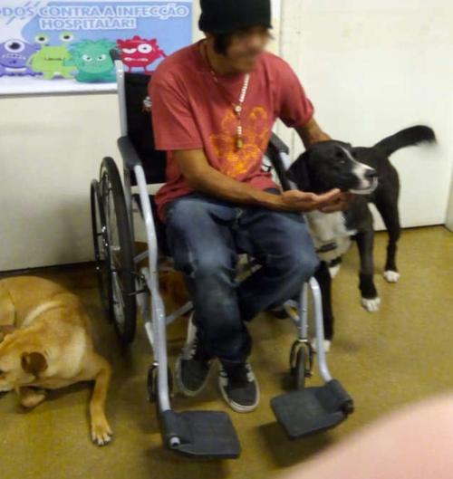 救急病院に運ばれたホームレスの男性を見守る4匹の犬01