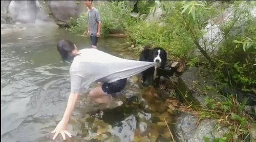 泳がせてくれない犬06