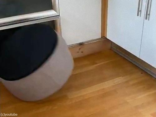 犬がベッドを逆さにすると01