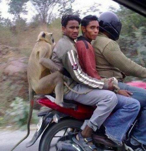 一方インドでは03